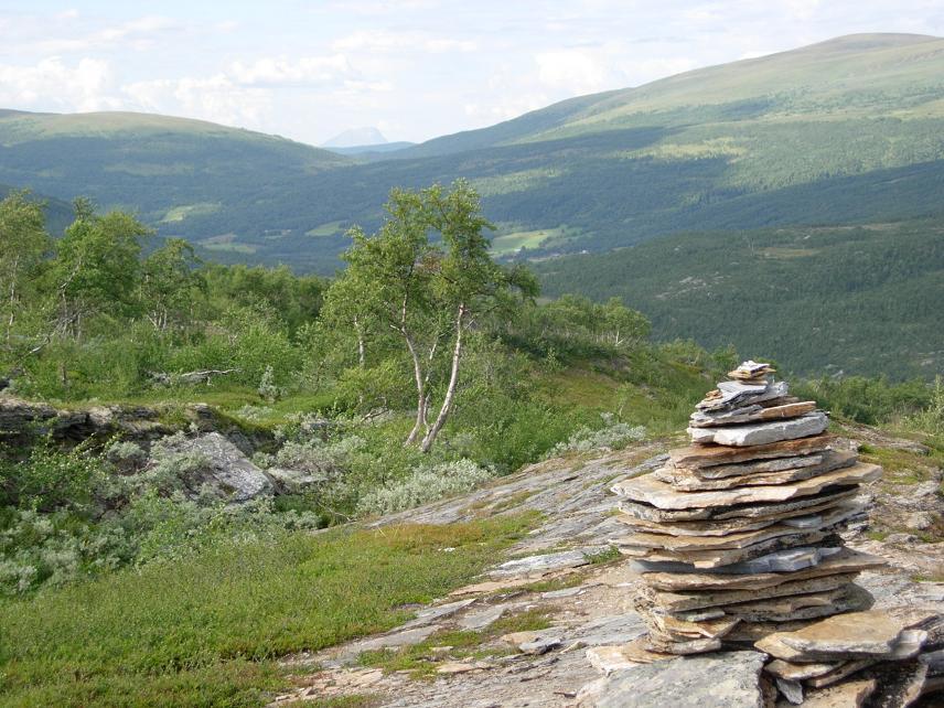 Sommer 2006 253.jpg