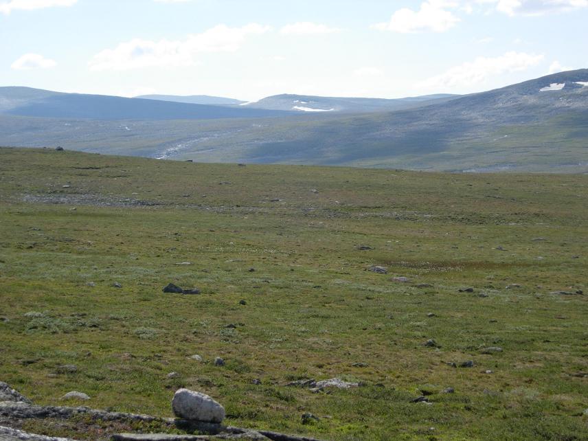 Sommer 2006 261.jpg