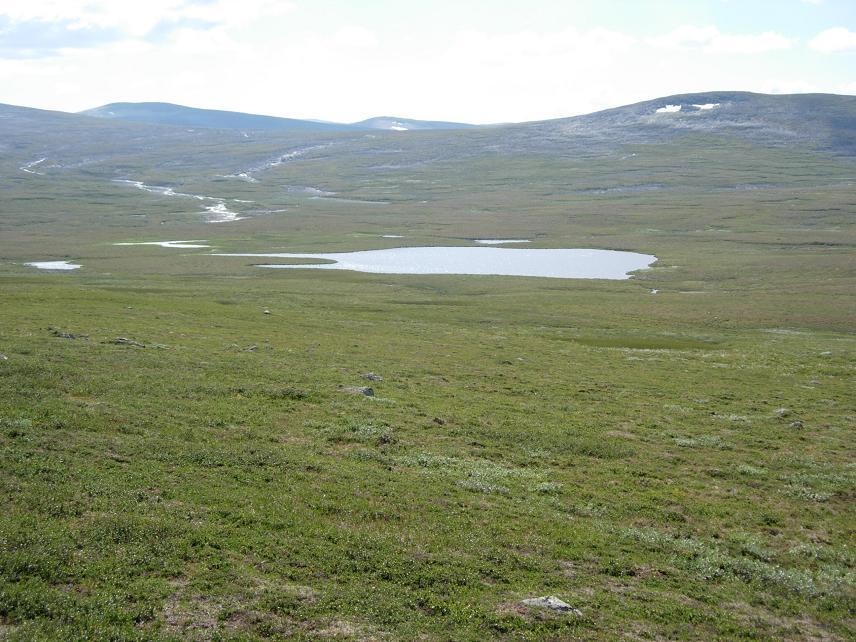 Sommer 2006 265.jpg