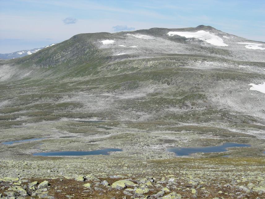 Sommer 2006 306.jpg